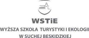 logo_wstie